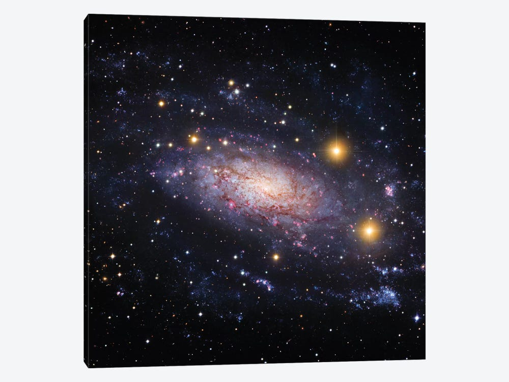 Spiral Galaxy In The Hydra Constellation (NGC 3621) by Robert Gendler 1-piece Canvas Art