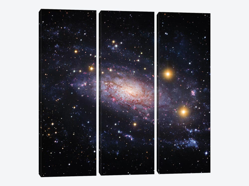 Spiral Galaxy In The Hydra Constellation (NGC 3621) by Robert Gendler 3-piece Canvas Artwork