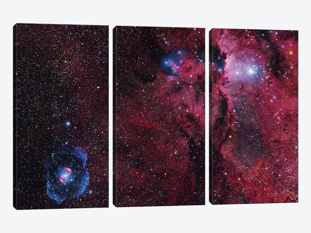 Star Forming Region In Ara (NGC 6188) I by Robert Gendler 3-piece Canvas Artwork