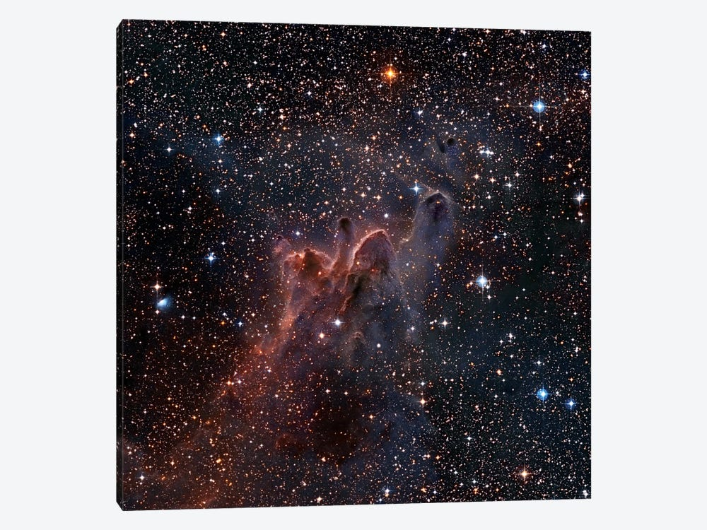 CG-30/31/38 Cometary Globules In Vela/Puppis by Robert Gendler 1-piece Canvas Wall Art