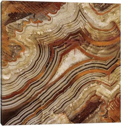 Burnished Copper Canvas Art Print
