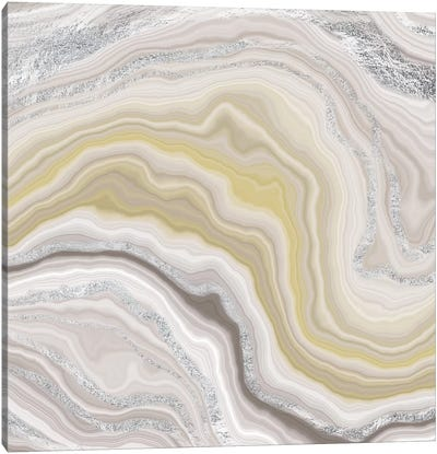 Sterling Fluidity Canvas Art Print