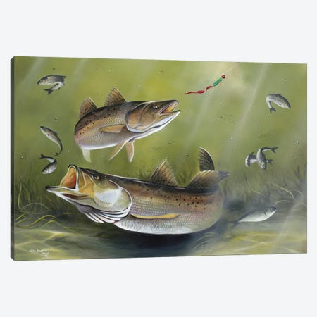 Speckled Trout Canvas Print #GEP158} by Geno Peoples Canvas Art