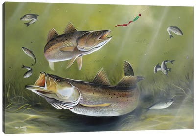 Speckled Trout Canvas Art Print