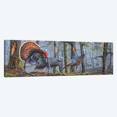 Trophy Strut Canvas Print #GEP178} by Geno Peoples Canvas Artwork