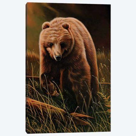 Brown Bear Canvas Print #GEP26} by Geno Peoples Canvas Wall Art