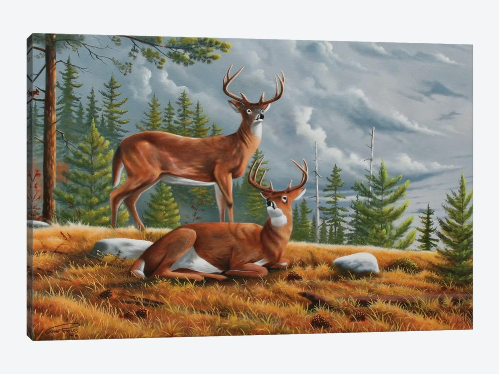 Buck Country 1 by Geno Peoples 1-piece Canvas Art