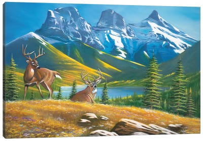 Buck Country 2 Canvas Art Print