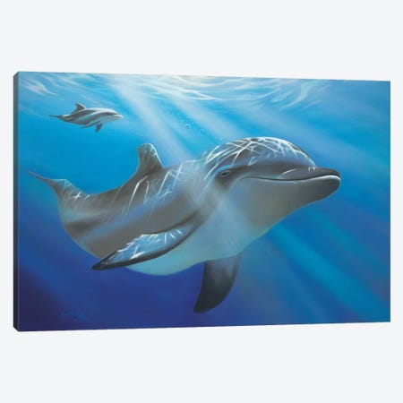Evening Dive Canvas Print #GEP63} by Geno Peoples Canvas Print