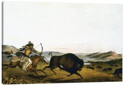 Buffalo Hunt, C1830 Canvas Art Print