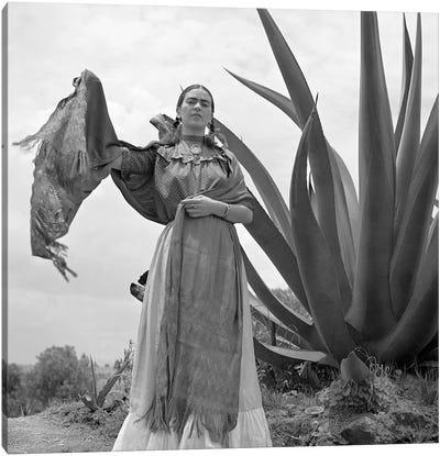 Frida Kahlo (1907-1954) Canvas Art Print