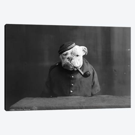 Bulldog, C1905 Canvas Print #GER204} by Unknown Canvas Artwork