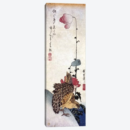 Hiroshige: Poppies Canvas Print #GER5} by Ando Hiroshige Canvas Print