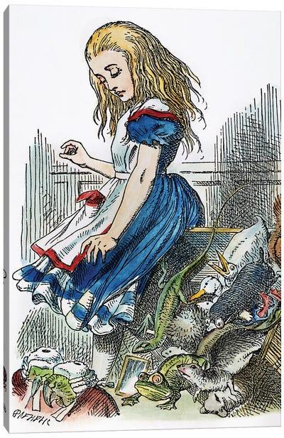 Carroll: Alice, 1865 Canvas Art Print