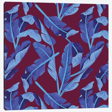 Tropical XVII: Bluebird Canvas Print #GES113} by Galaxy Eyes Canvas Wall Art