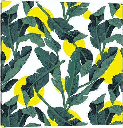 Tropical XVII: Fresh Canvas Art Print