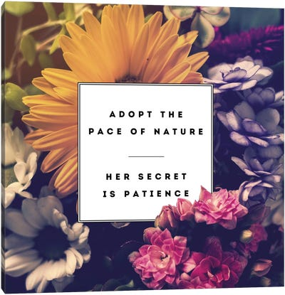 Pace Of Nature Canvas Print #GES57