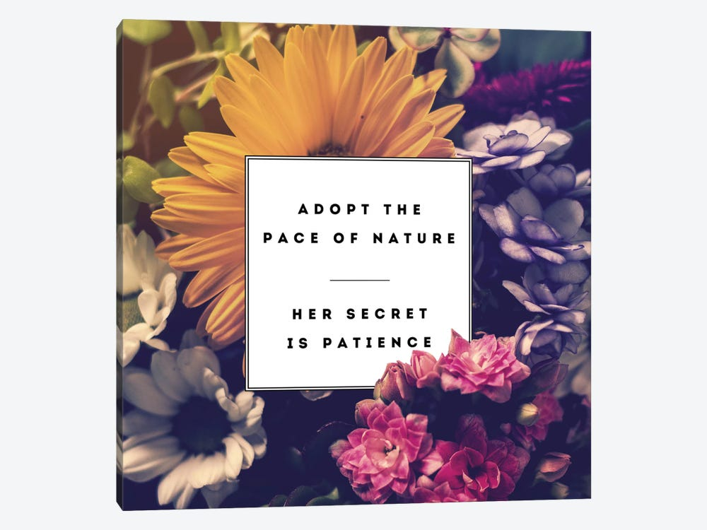Pace Of Nature by Galaxy Eyes 1-piece Canvas Wall Art