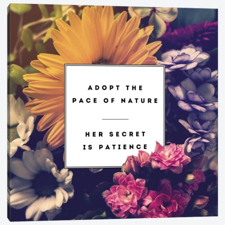 Pace Of Nature Canvas Print #GES57} by Galaxy Eyes Canvas Art