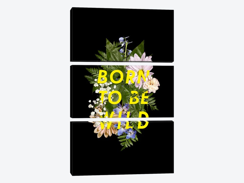 Born Wild by Galaxy Eyes 3-piece Canvas Wall Art
