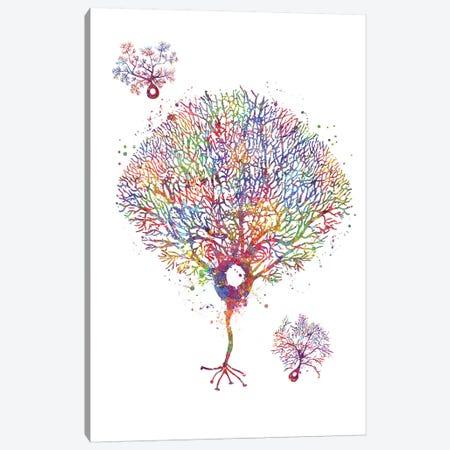 Purkinje Neuron Canvas Print #GFA102} by Genefy Art Art Print