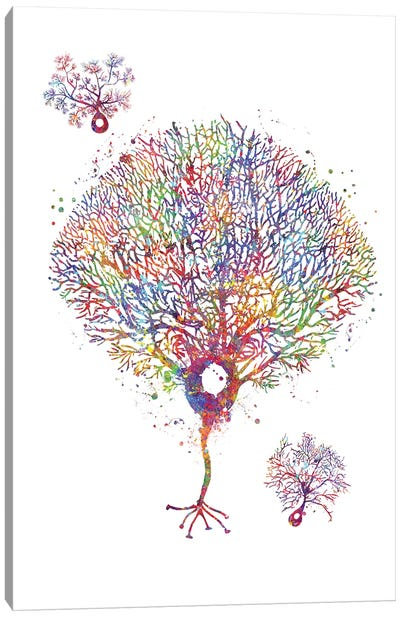 Purkinje Neuron Canvas Art Print