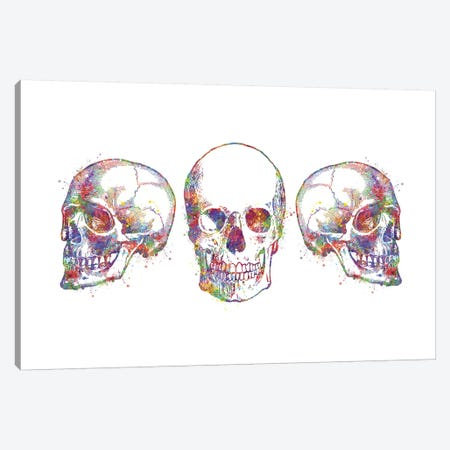 Skull Set III Canvas Print #GFA122} by Genefy Art Canvas Art Print
