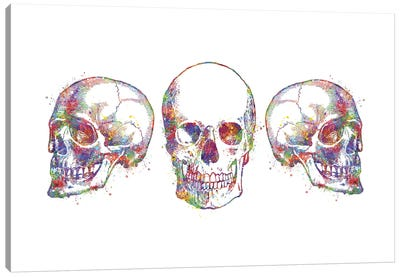 Skull Set III Canvas Art Print