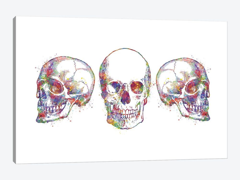 Skull Set III by Genefy Art 1-piece Canvas Art Print