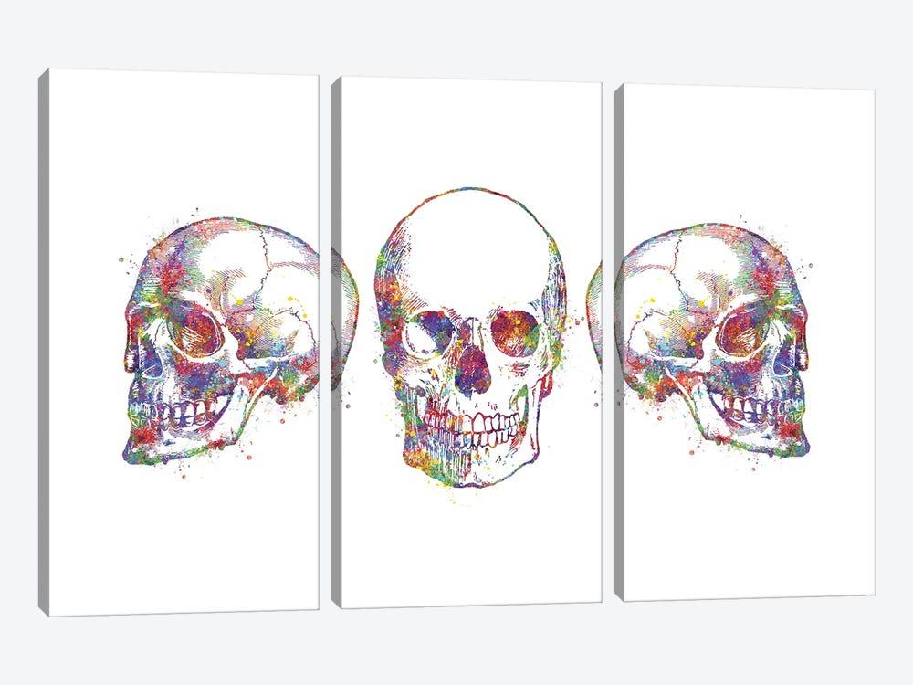 Skull Set III by Genefy Art 3-piece Art Print