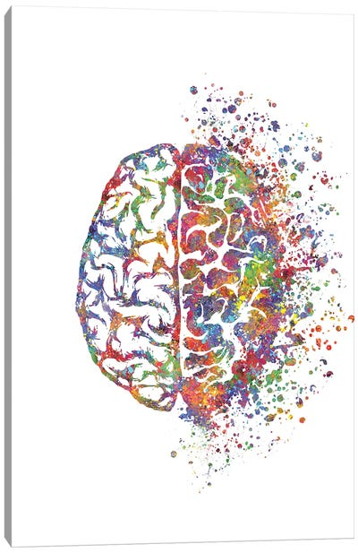 Brain Left Right Canvas Art Print