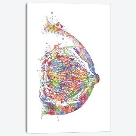 Breast Canvas Print #GFA18} by Genefy Art Canvas Art Print
