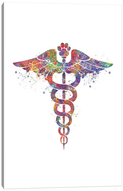 Caduceus Vet Paw Canvas Art Print
