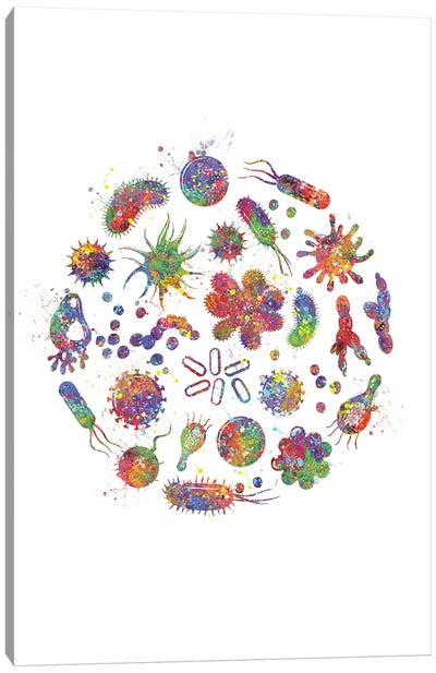 Bacteria Canvas Art Print