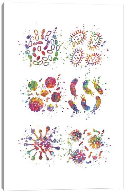 Bacteria Set Canvas Art Print