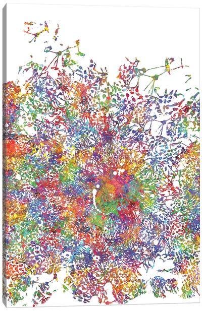 Embryonic Stem Cells Canvas Art Print