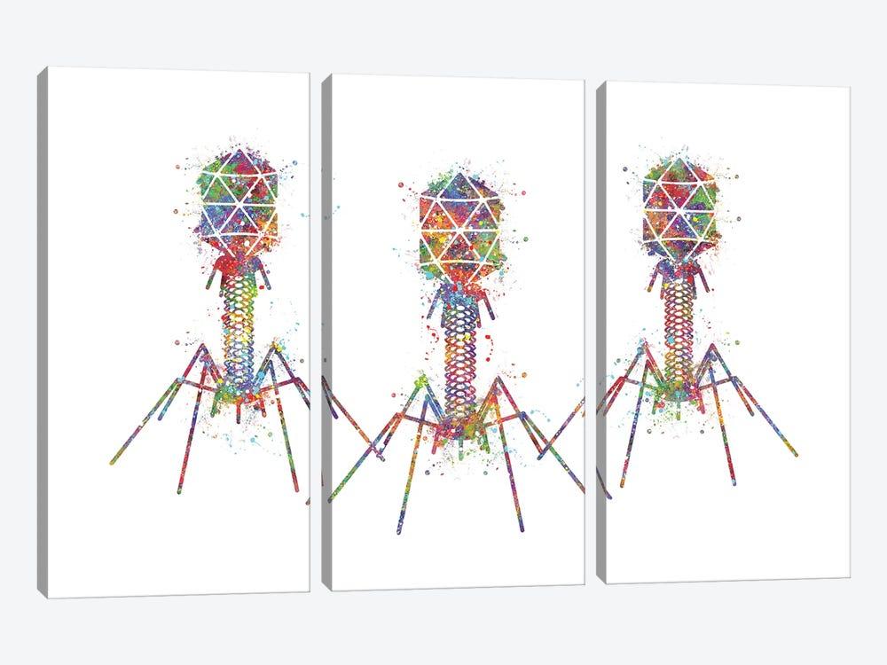 Bacteriophage III by Genefy Art 3-piece Canvas Art