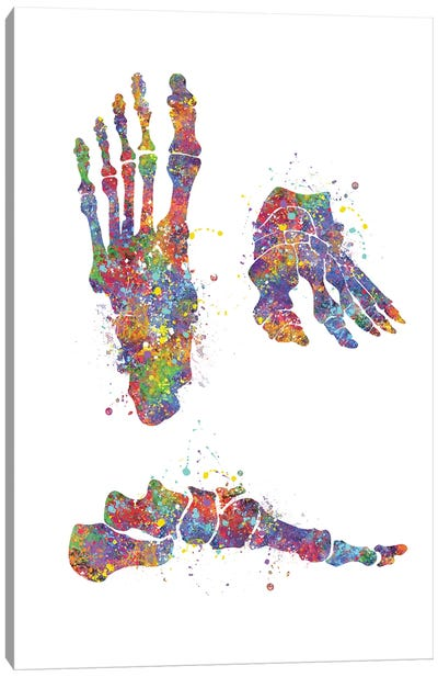 Foot Bone II Canvas Art Print
