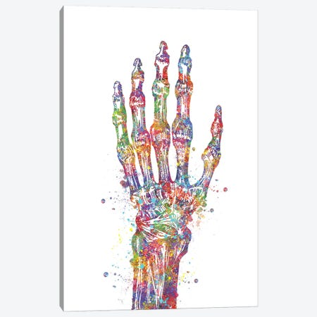Hand Bone Canvas Print #GFA61} by Genefy Art Canvas Art