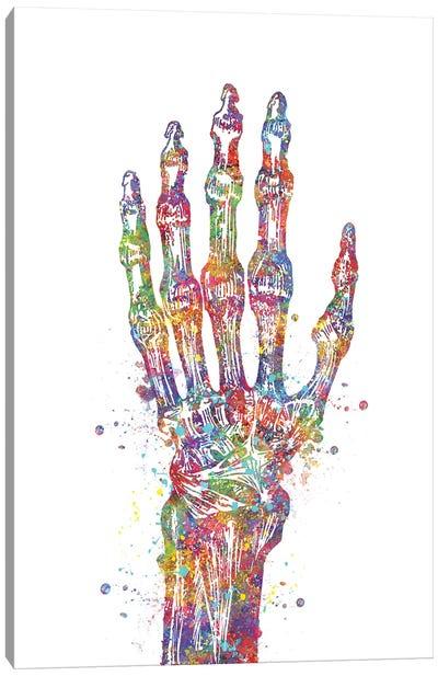 Hand Bone Canvas Art Print