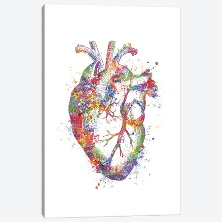 Heart Anatomy Fig Canvas Print #GFA63} by Genefy Art Canvas Wall Art