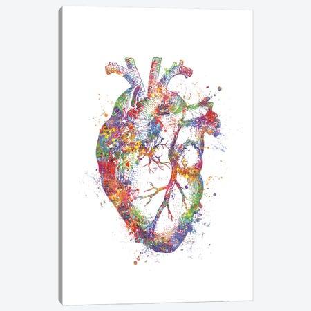 Heart Anatomy Fig Canvas Print #GFA63} by Genefy Art Canvas Wall Art