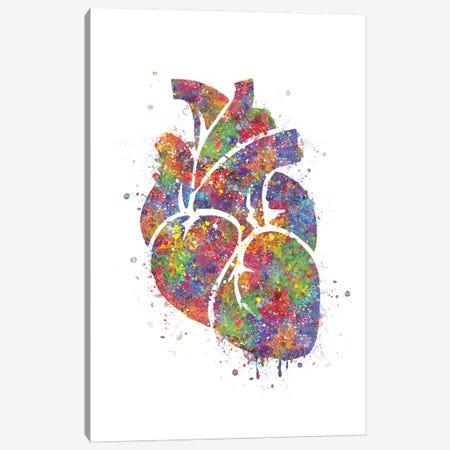 Heart Anatomy III Canvas Print #GFA64} by Genefy Art Canvas Art Print