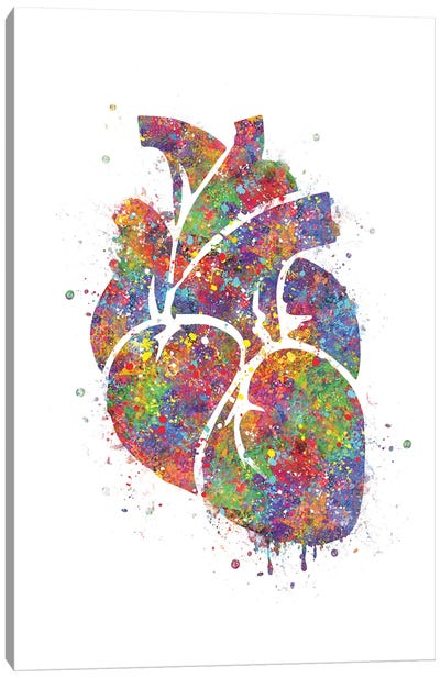 Heart Anatomy III Canvas Art Print