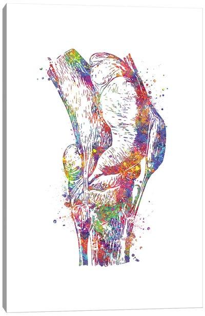 Knee Canvas Art Print