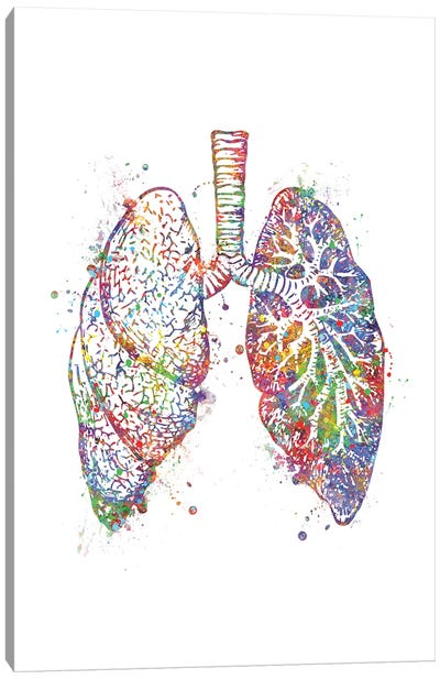 Lungs Canvas Art Print