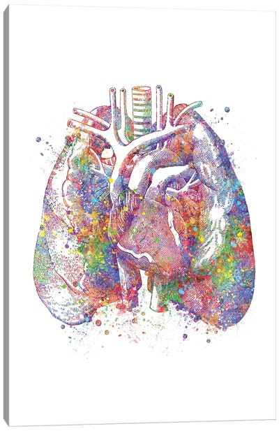 Lungs II Canvas Art Print