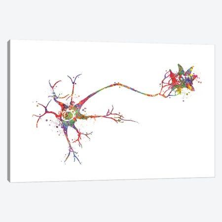 Multi Polar Neuron Canvas Print #GFA89} by Genefy Art Canvas Art