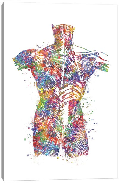 Muscle Back Canvas Art Print