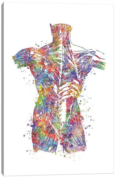 Muscle Back Canvas Art Print